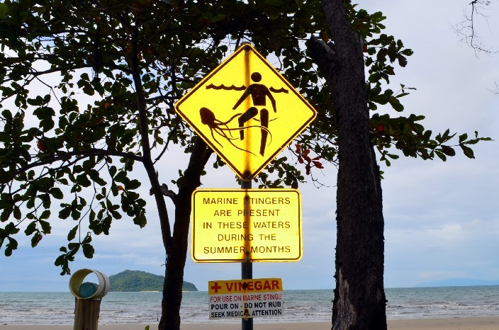 Cape Tribulation006