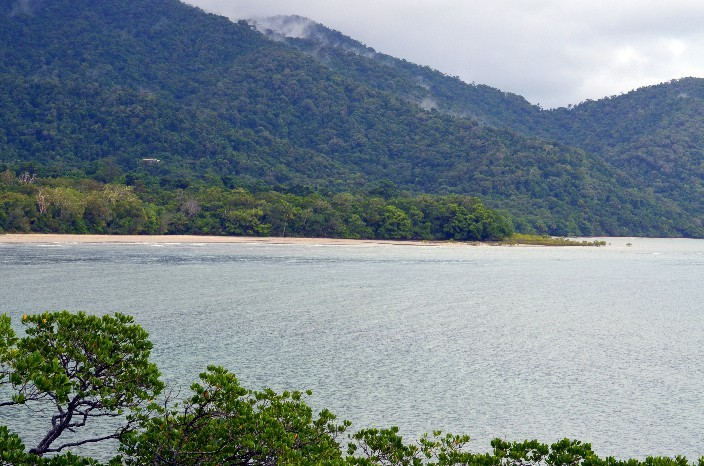 Cape Tribulation022