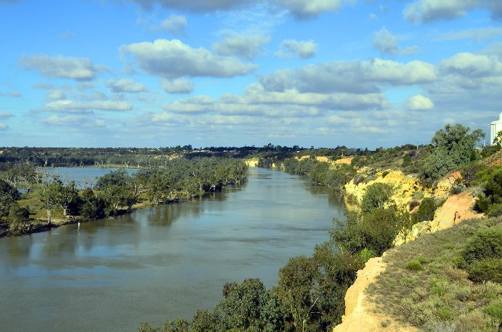 Murray River016