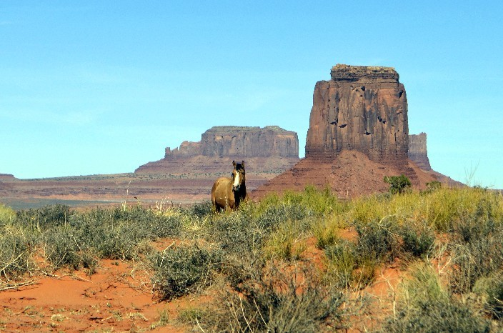 Monument Valley NP16