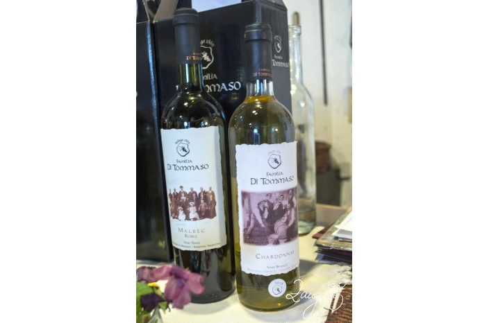 Mendoza Vineries 22